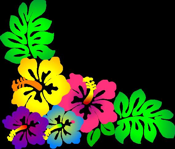 570x486 Floral Clipart Hawaiian Flower