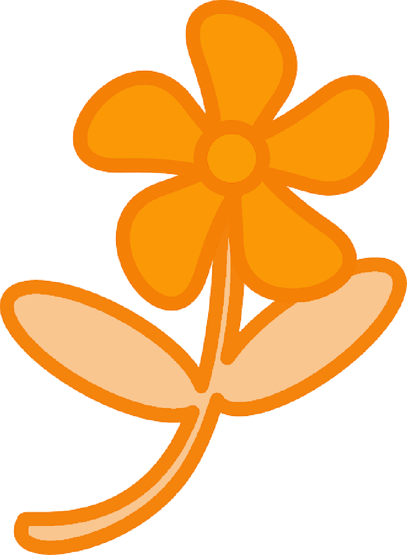 800x1091 Simple, Plants, Leaf, Flower, Flowers, Cartoon, Orange
