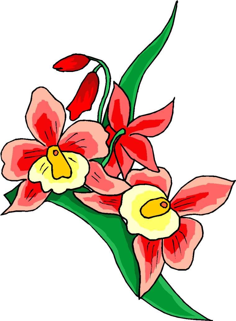 760x1035 Flower Clipart Clipart Panda