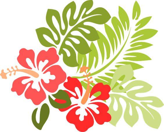 564x454 Hibiscus Flower Clip Art