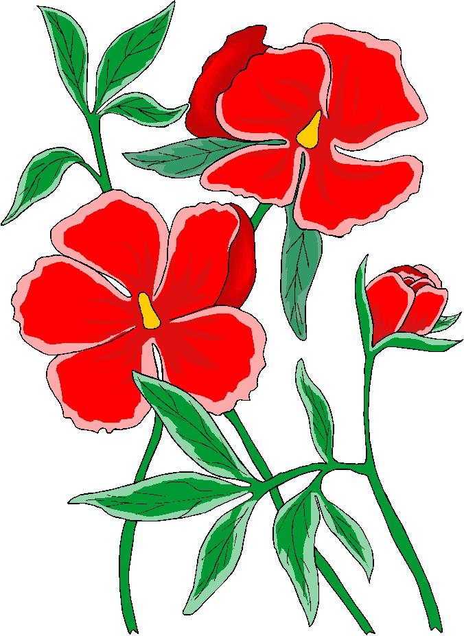 676x927 Moons Flower Flower Clipart