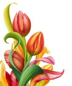 236x283 Vase Of Flowers Clip Art Flower Bouquet Clipart, Dozen Tulips