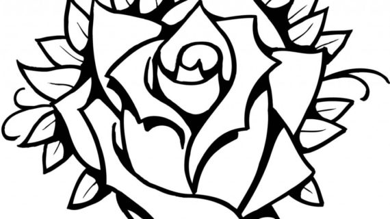 570x320 Rose Line Drawing Clip Art Simple Line Drawing Of Flowers