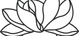 272x125 Best Flower Line Drawings Ideas On Sketch, Rotring