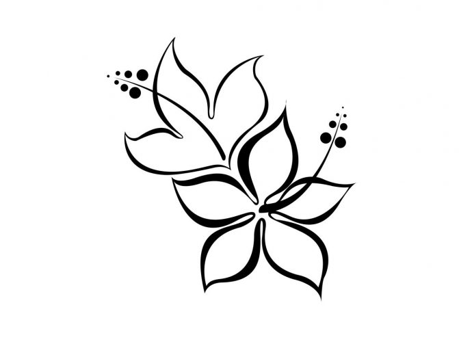 671x503 Coloring Pages Drawing Simple Flowers Flower Line Drawings