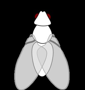 282x299 Fly Clip Art