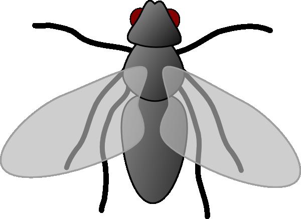 600x437 Fly3 Clip Art