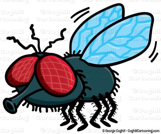 540x449 Cartoon Fly Clip Art Stock Illustration