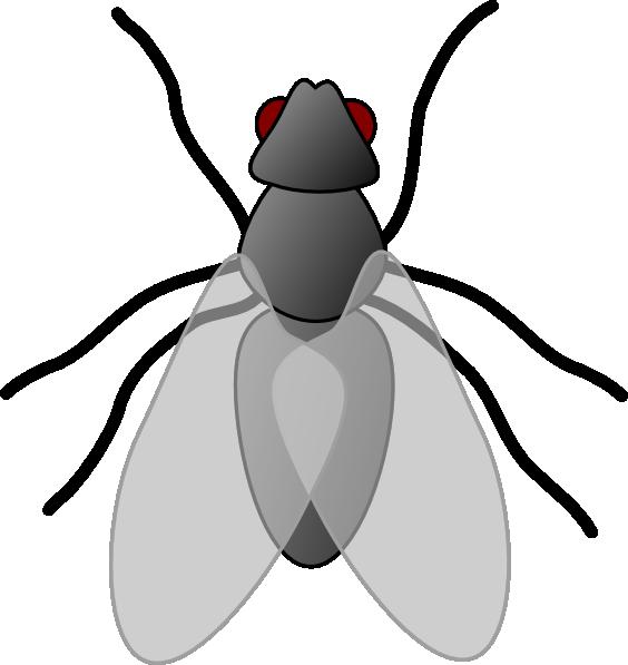 564x597 Fly Clip Art Free Clipart Panda