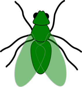 282x299 Green Fly Green For Web Clip Art