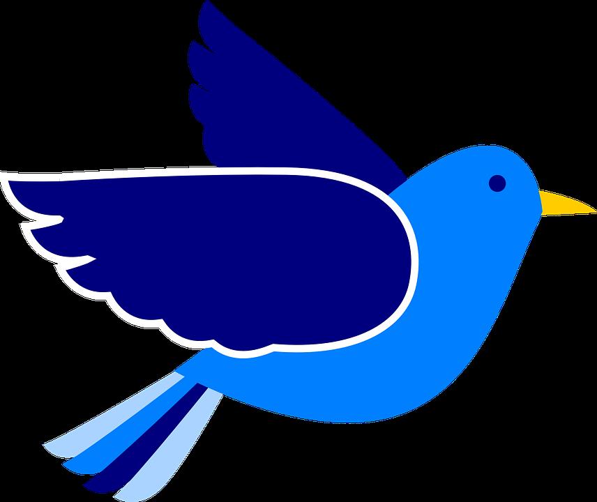 856x720 Pigeon Clipart Bird Fly