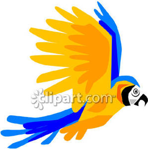 298x300 Blue And Gold Parrot Flying