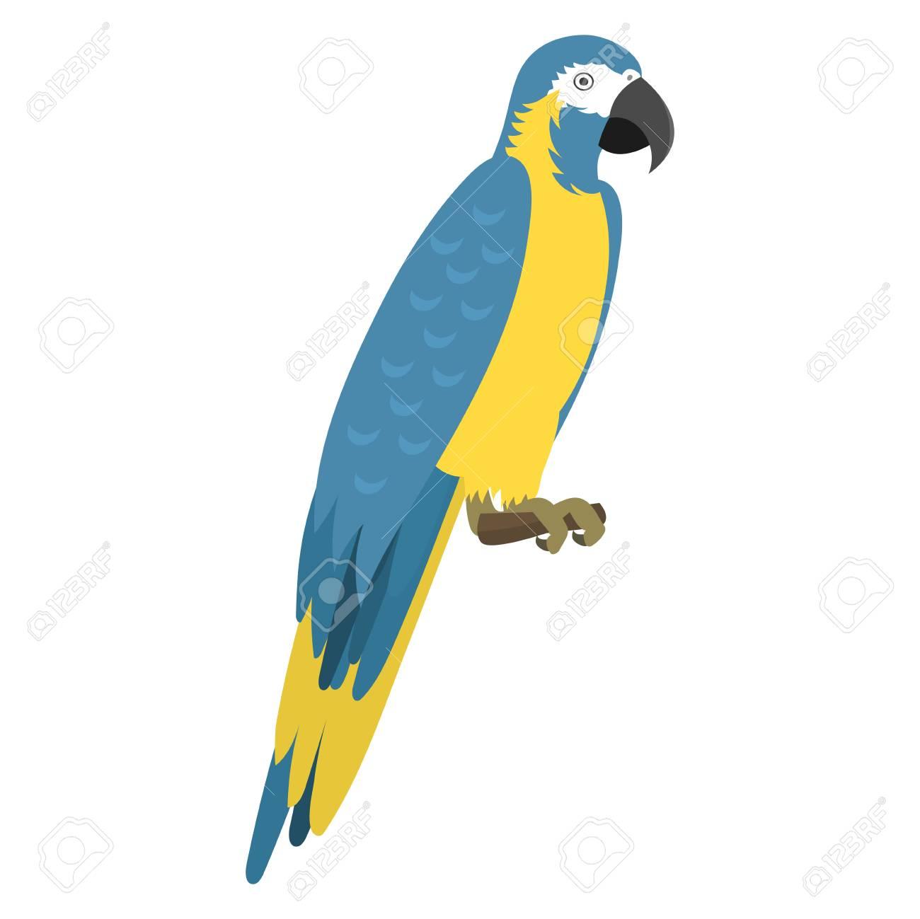 1300x1299 Cartoon Tropical Parrot Wild Animal Bird Vector Illustration