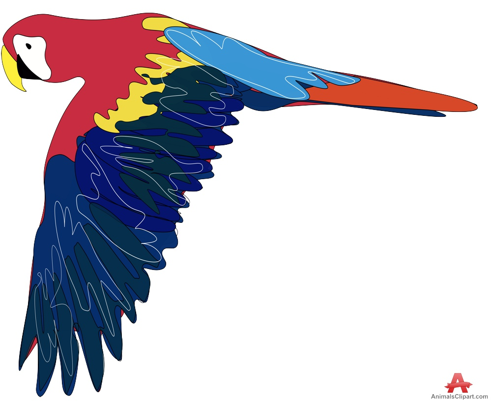 999x819 Colored Parrot Flying Free Clipart Design Download