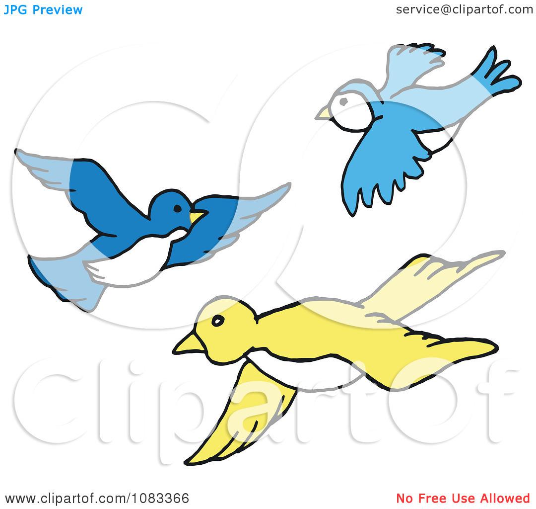 1080x1024 Flight Clipart Bird Fly