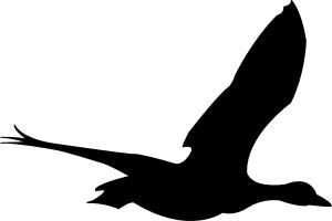300x200 Flying Bird Clip Art Free Vector In Open Office Drawing Svg Svg