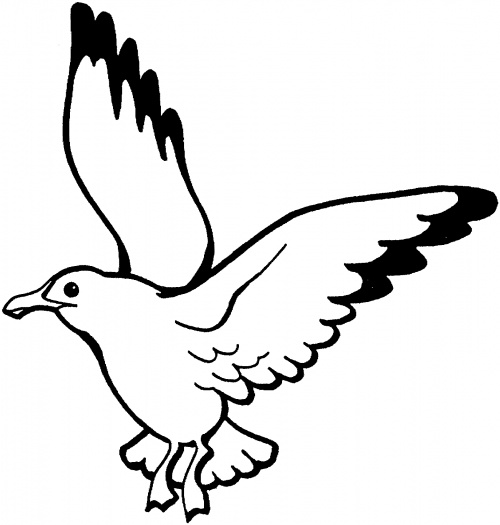 500x525 Black And White Seagull Clip Art