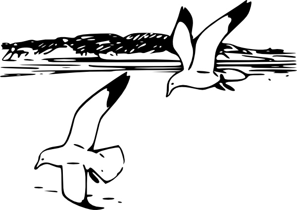 600x424 Flying Sea Gulls Clip Art Free Vector In Open Office Drawing Svg