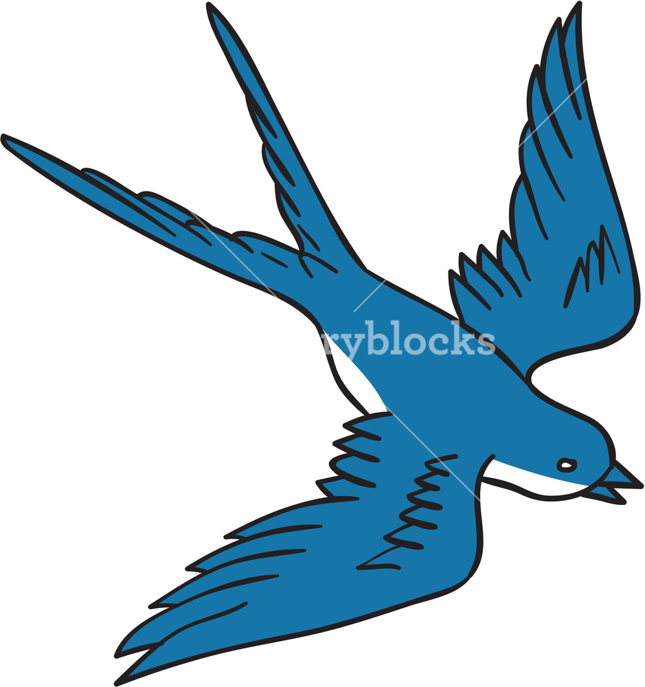 939x1000 Drawing Sketch Style Illustration Of A Swallow, A Fast Flying