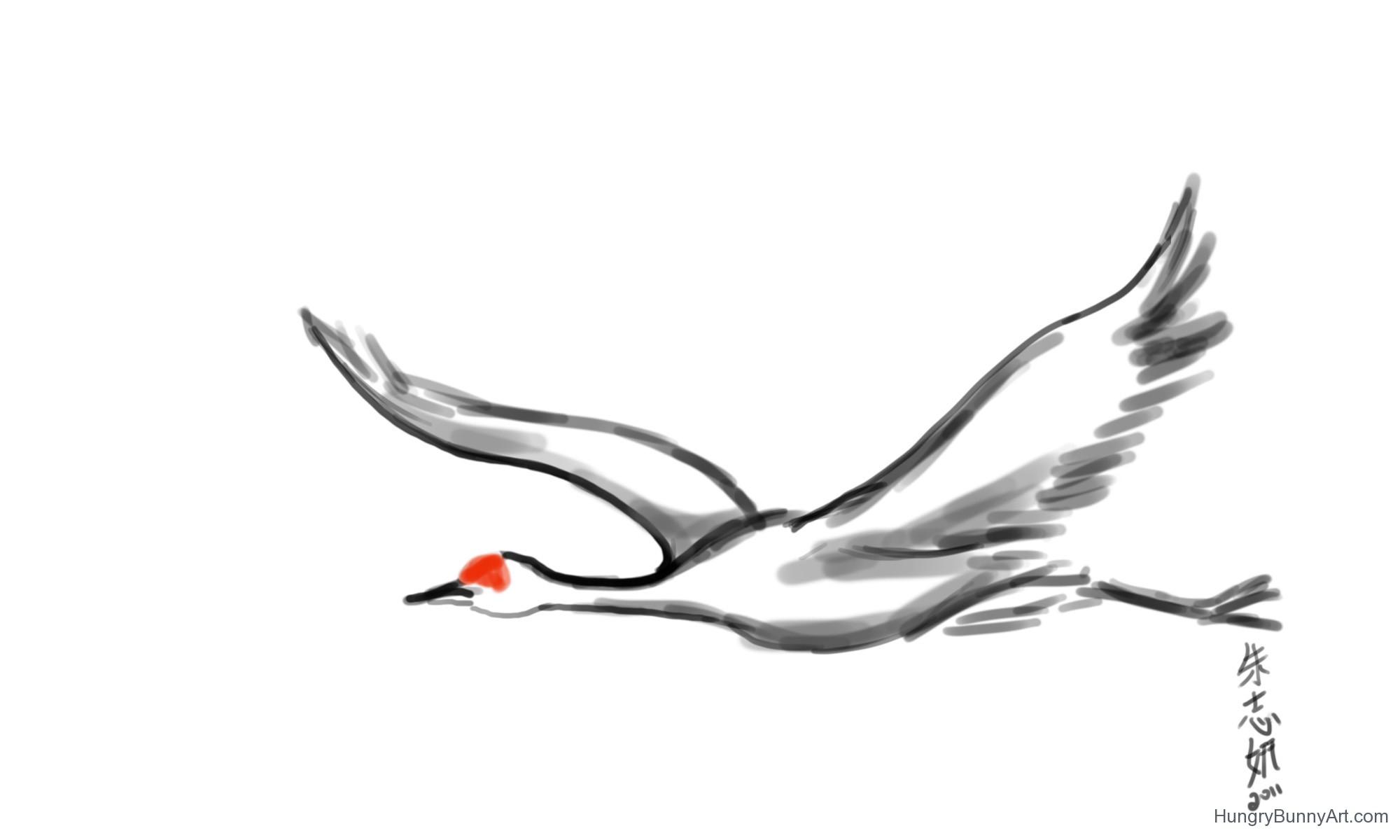 2000x1200 Drawn Bird Flight Drawing