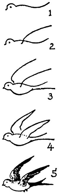 Flying Bird Drawing Free Download Best Flying Bird Drawing On