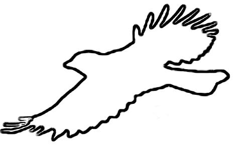 468x311 Flying Bird Outline Vector Clipart Panda