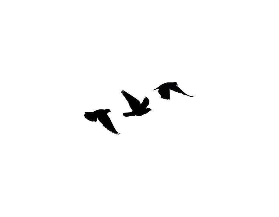 900x700 Birds Tattoo