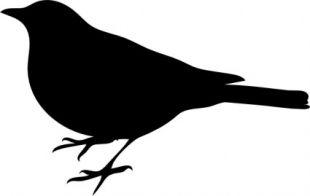 310x196 Flying Bird Clip Art Free Vectors Ui Download