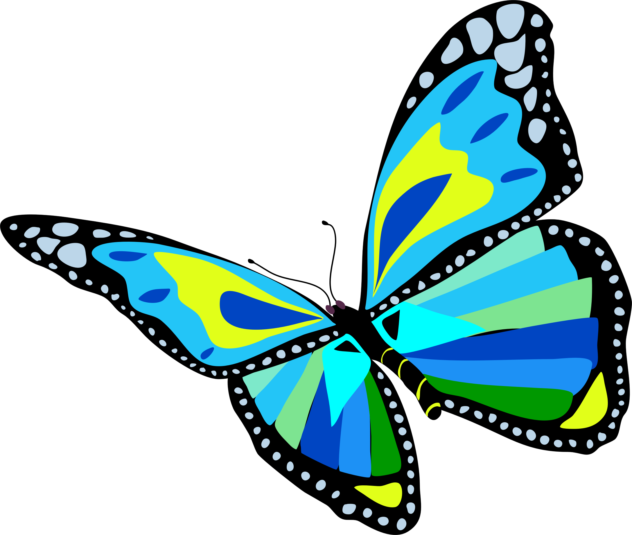 Flying Butterfly Clipart | Free download on ClipArtMag