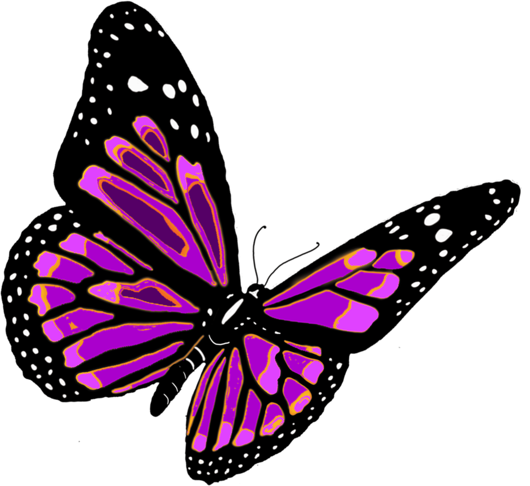 1053x967 Monarch Butterfly Clipart Pink