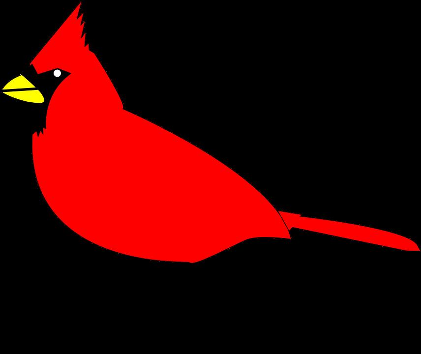 856x720 Cardinal Clipart Vector