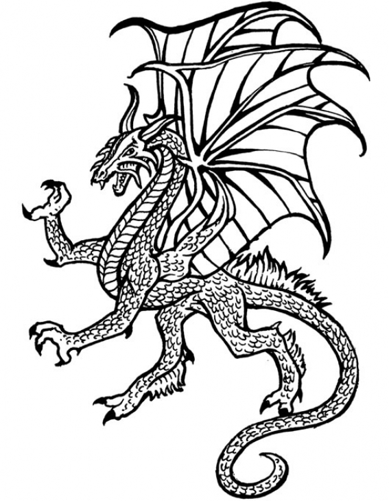 567x730 Flying Dragon Coloring Page. Outlined Flying Dragon Vector