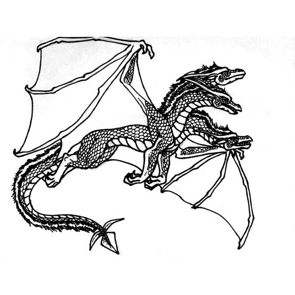 600x600 Flying Dragon Coloring Pages Clipart Panda