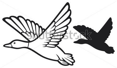 380x221 Mallard Duck Clipart