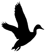 150x171 Mallard Duck Silhouette