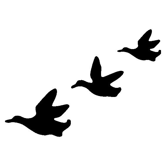 565x565 Flying Ducks Wall Stickers