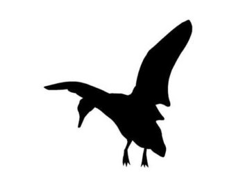 340x270 Flying Duck Decal Etsy
