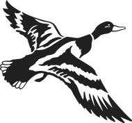 190x177 Mallard Duck Flying Clipart Panda