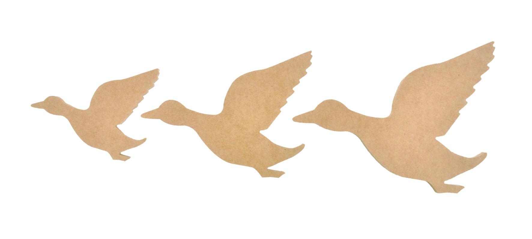 1772x796 Sb2087 Flying Ducks
