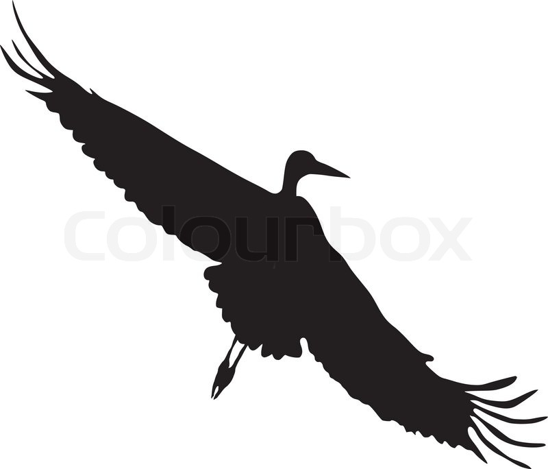800x684 Silhouette Of Flying Goose Stock Vector Colourbox