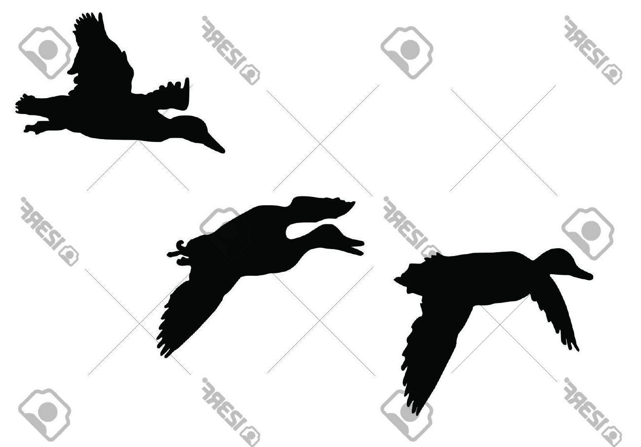 1300x906 Unique Mallard Ducks Flying Silhouette Stock Vector Duck Design