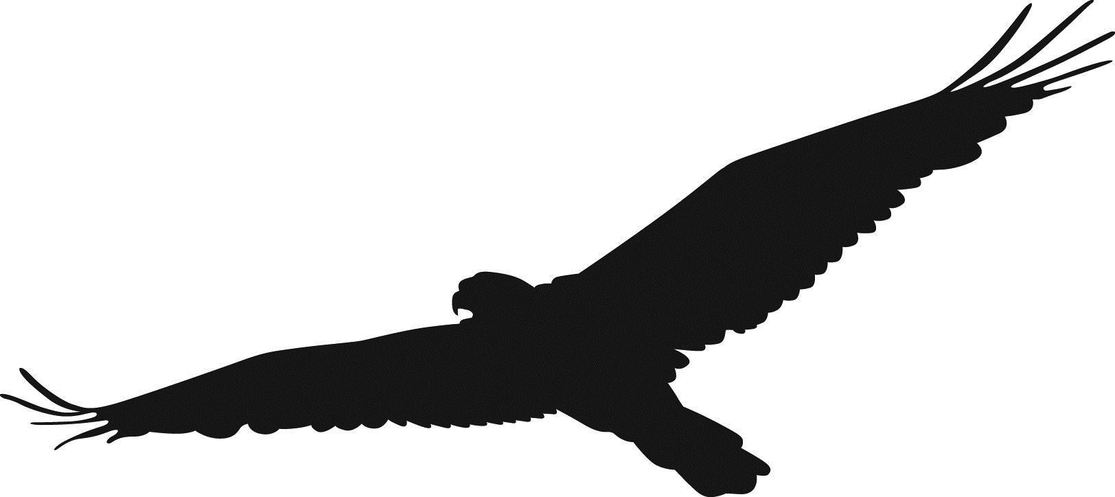 Flying Hawk Clipart | Free download best Flying Hawk ... Flying Hawk Silhouette Vector