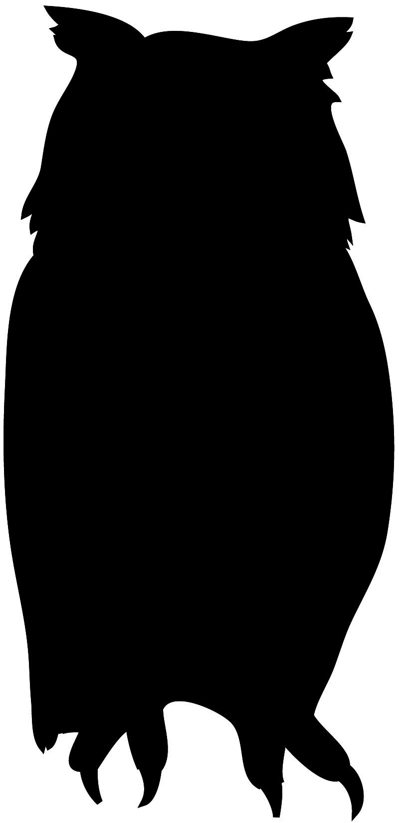 800x1652 Bird Silhouette Diy Crafty Things Silhouettes, Owl