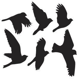 265x265 Best Bird Silhouette Ideas Bird Silhouette Art