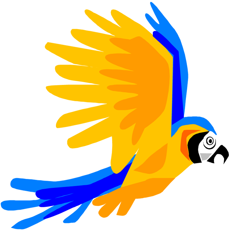 745x750 Orange Clipart Parrot