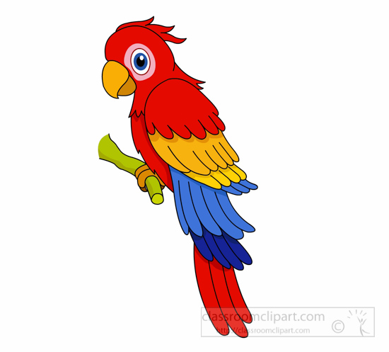 550x497 Parrot Clip Art Inderecami Drawing