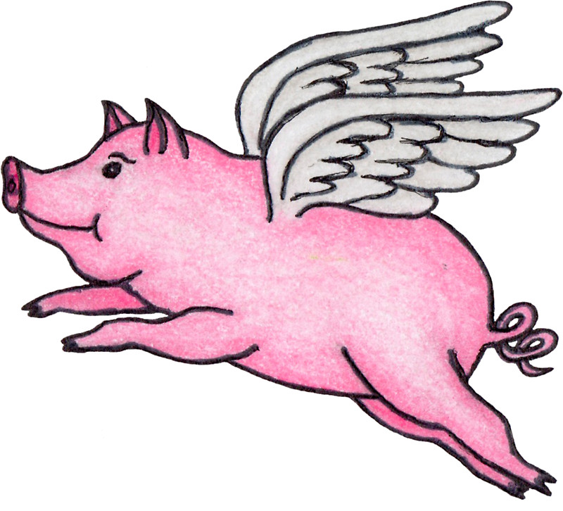 800x726 Flying Pig Stickers By Dmharada Redbubble
