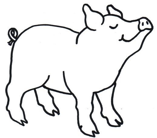 518x454 Pig Clipart Pig Outline