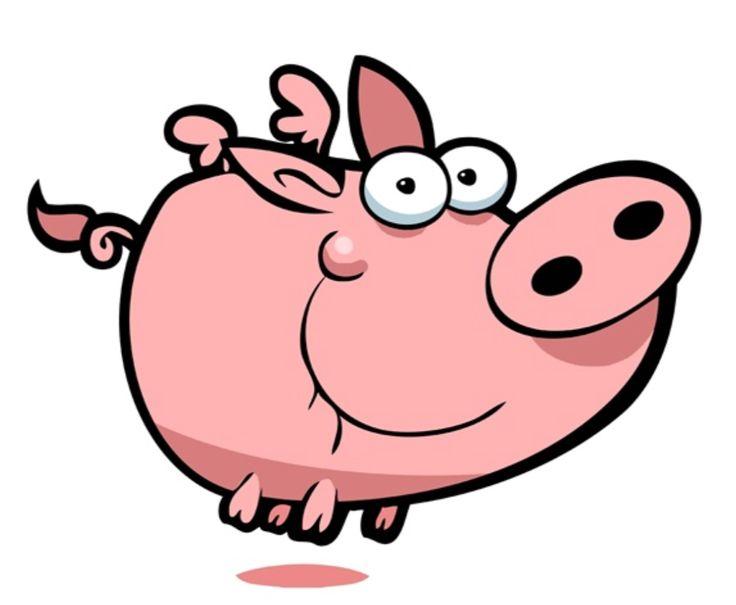 736x605 503 Best Pigs Images