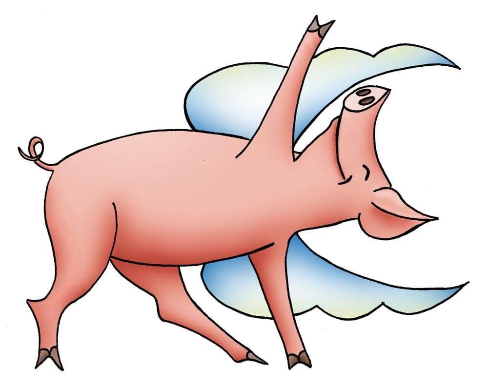 1000x788 Flying Pig Yoga